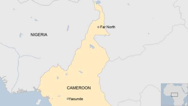 50 Boko Haram insurgents surrender in Cameroon