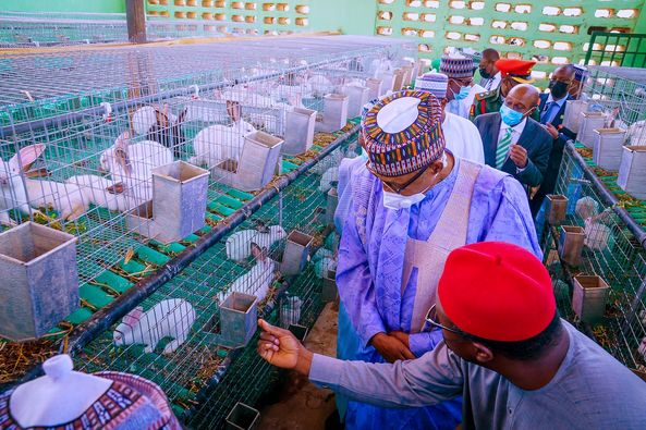 Lifting 100 million Nigerians out of poverty realisable - Buhari